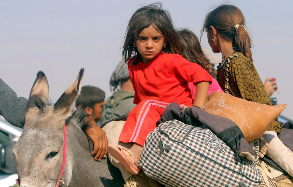 Displaced children from the minority Yazidi sect, fleeing violence from forces loyal to the Islamic State in Sinjar town, ride on a donkey as they head towards the Syrian border, on the outskirts of Sinjar mountain, near the Syrian border town of Elierbeh