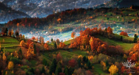 nature-landscape-photography-morning-transylvania-alex-robciuc-91