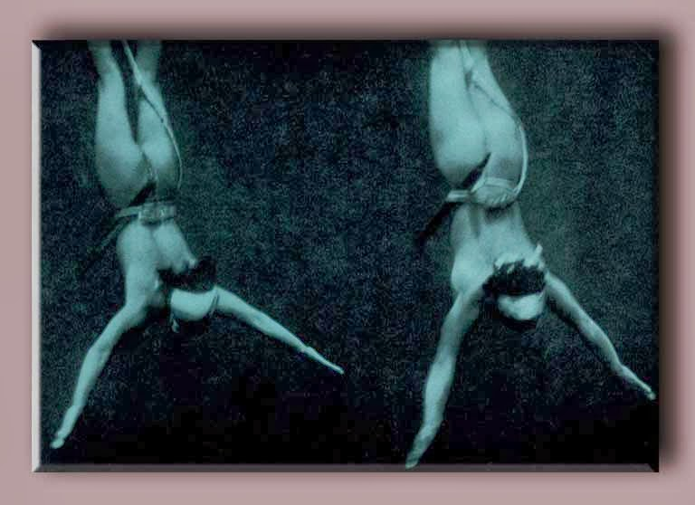 two_ama_girls_diving